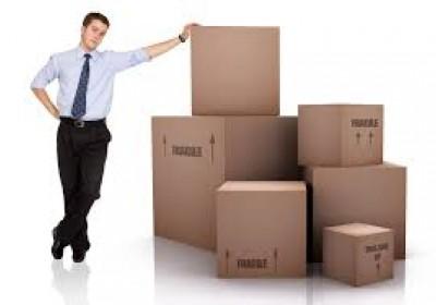 Логистика закупок и управление цепями поставок
